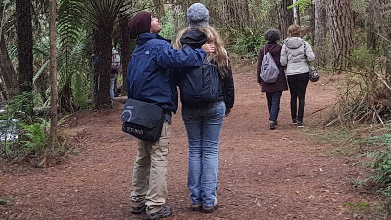 Forest Therapy Guide Training
