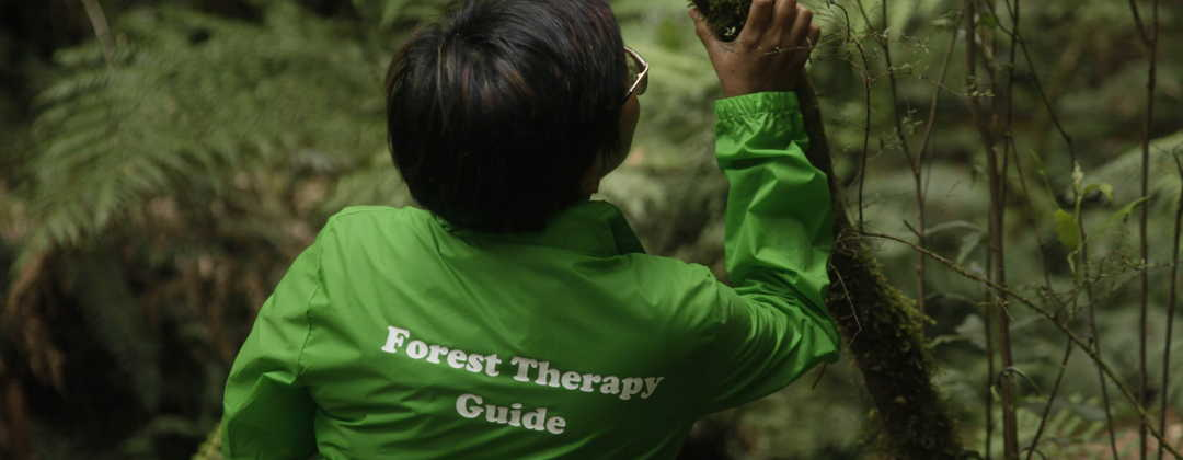 INFTA_Certified Forest Therapy Guide