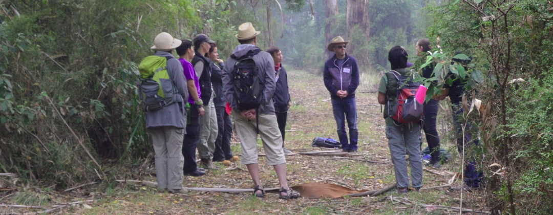 INFTA Forest Therapy Guides in training